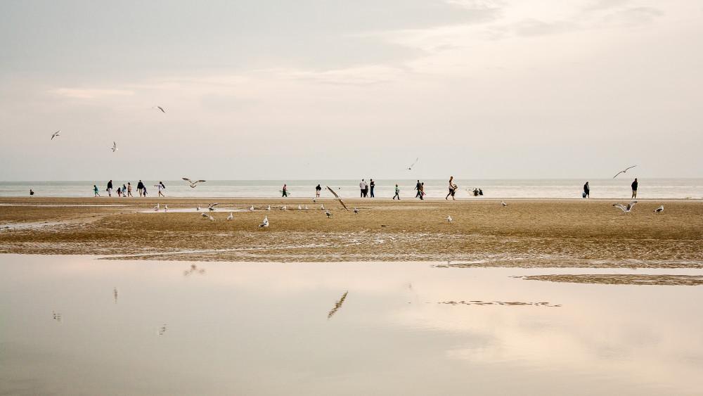 Pêcheurs, badauds et goëlands...jour d'affluence en cette fin d'été sur la plage de Cayeux!