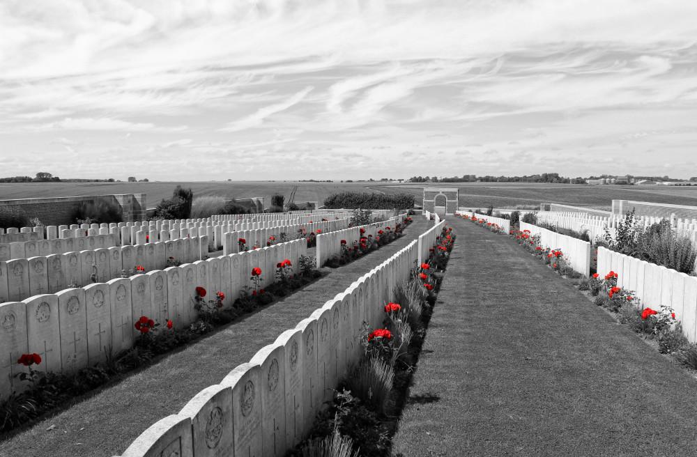 Le cimetière britannique, conçu par Sir Edwin Lutyens, contient 1 763 sépultures de la Première Guerre mondiale. Photo en noir et blanc plus les roses.