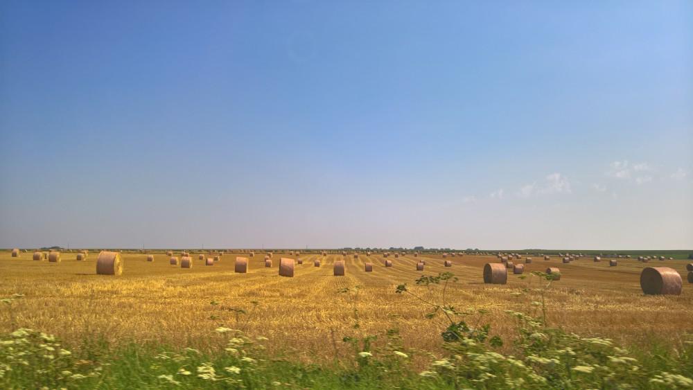 Parmi les beaux paysages picards : les rouleaux d'été.